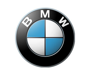 No I In Clare, Fun and Dynamic Training | BMW